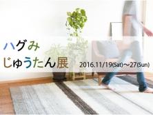 ハグみじゅうたん展開催 11/19(土)~11/27(日)