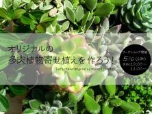 「オリジナルの多肉植物寄せ植えを作ろう!」ワークショップ開催5/6(土)